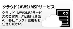 クラウド(AWS)MSPサービス - クラウド(AWS)MSPサービスの御案内。AWS監視を始め、各社クラウド監視もお任せください。